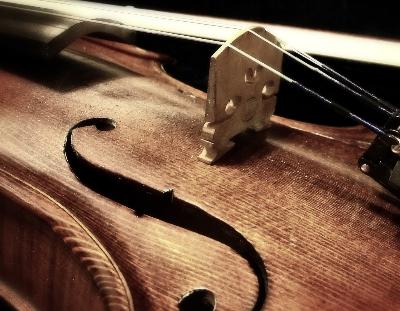 Violon - Violoncelle